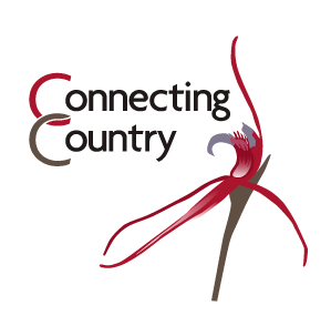 Connecting Country logo